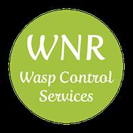 wasp exterminator kent